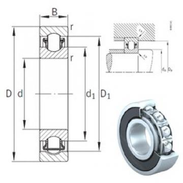 20 mm x 47 mm x 14 mm  INA BXRE204-2RSR needle roller bearings