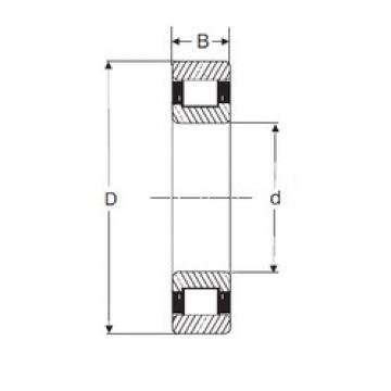 20 mm x 47 mm x 14 mm  SIGMA N 204 cylindrical roller bearings