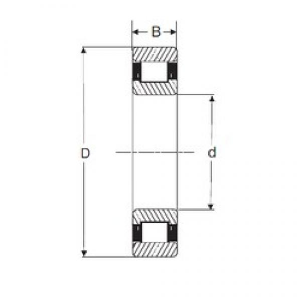 20 mm x 47 mm x 14 mm  SIGMA N 204 cylindrical roller bearings #1 image